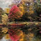 Autumn&#x27;s Mirror by Jessica Jenney