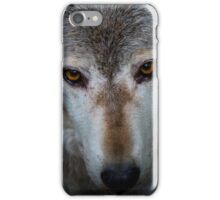 Canadian Timber Wolf iPhone Case/Skin