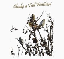 Shake a Tail Feather Tee Shirt or Hoodie by Julia Harwood