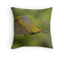 Flight 207 - you are cleared to land on runway 2......! Throw Pillow