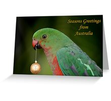 King Parrot Greeting card from Australia Greeting Card