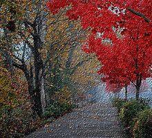 Velvety autumn by jcastrof