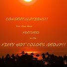 Fiery Hot Color Banner by ZWC Photography