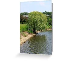 Purple under the Willow Greeting Card