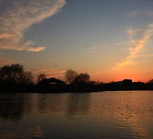 Sunset in Lisle Community Park by Adam Kuehl