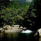 Crystal Cascades, Cairns N Q.  Aust. by MardiGCalero