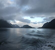 An Evening on Doubtful Sound by Jon Charles