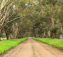 Euroa country road by phillip wise