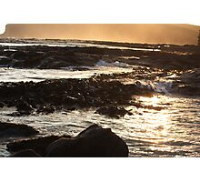 Sunset over Kelp and Water Photographic Print