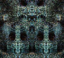 Lichen Stone Faces by Yampimon