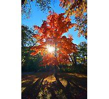 Orange Glow Photographic Print