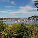 Tarbert Harbour by Lynn Bolt