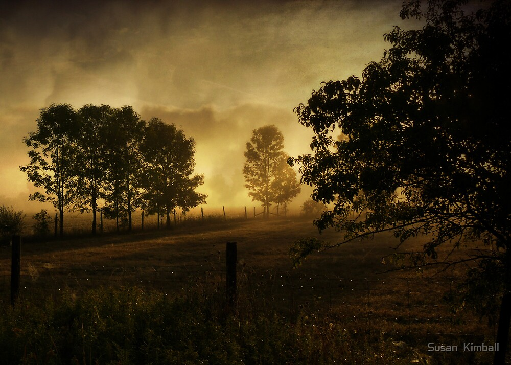 Misty Morning by Susan  Kimball