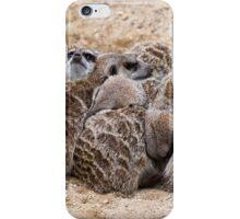 A Huddle of Meerkats iPhone Case/Skin