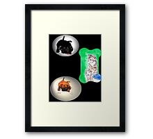 Cat's Bane Of Existence  Framed Print
