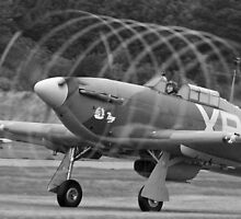 Vortex - Shoreham Airshow 2010 by Colin  Williams Photography