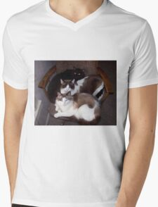 Three Cats Mens V-Neck T-Shirt