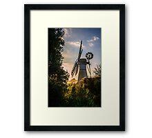 Through the Undergrowth Framed Print