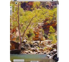 waterhole iPad Case/Skin