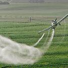 Dusting the fields by DeoVolente (Dewahl Visser)
