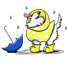 Westie Rainy Day Photographic Print