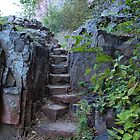 Rock Stairway by Scott Hendricks