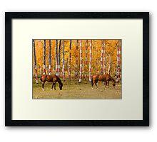 Patriotic Autumn Framed Print