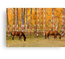 Patriotic Autumn Canvas Print