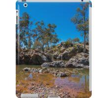 outback creek iPad Case/Skin