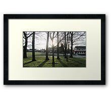 Sun Shining Through the Trees Framed Print