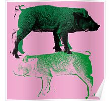 Green Pigs Poster