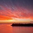 2015 Calendar - NSW South Coast by Malcolm Katon