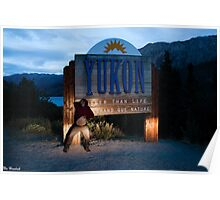 Modelling for the Yukon Poster