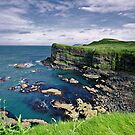 Antrim Coastline by Michelle McMahon