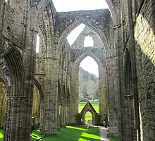 Abbey Ruins by Julia Milner
