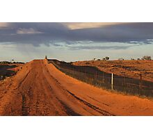 Wild Dog Fence Photographic Print