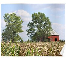 TIME WORN BARN IN CORNFIELD Poster