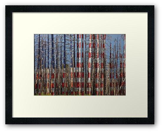 America Still Beautiful by Bo Insogna