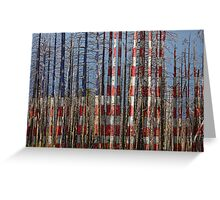 America Still Beautiful Greeting Card