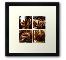FOUR TWIG Framed Print