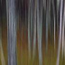 Into the Woods No2 - Digital Art by David Alexander Elder