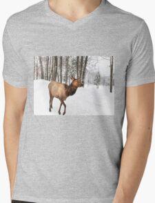 Walking in a Winter Wonderland - She Elk Mens V-Neck T-Shirt