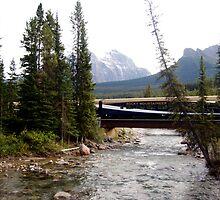 Rocky Mountaineer by Heather Eeles