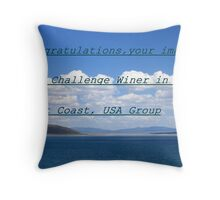 Challenge Entry Throw Pillow
