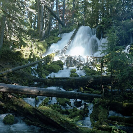 Clearwater Falls - Umpqua National Forest by Harry Snowden