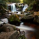 halls falls, the blue tier. northeast tasmania by tim buckley | bodhiimages