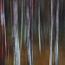 Into the Woods No4 - Digital Art by David Alexander Elder