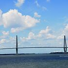 Historic Charleston SC III by PJS15204