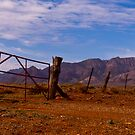 Wilpena Pound Range from Moralana Plain by pablosvista2
