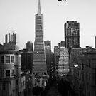 TransAmerica from Montgomery Street. San Francisco 2012 by Igor Pozdnyakov